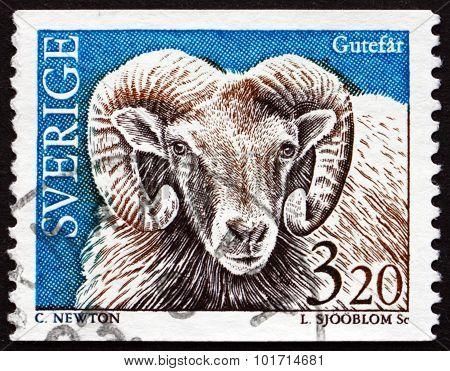 Postage Stamp Sweden 1994 Gotland Sheep