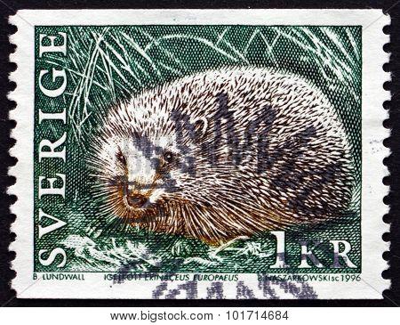 Postage Stamp Sweden 1996 European Hedgehog
