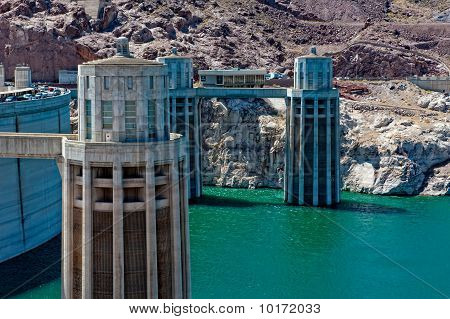 Hoover Dam Pflanze
