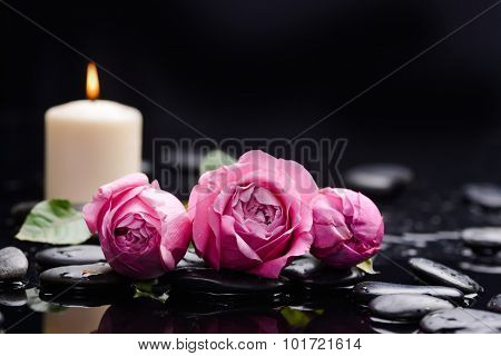 Beautiful rose with candle and therapy stones ,