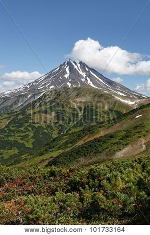 Landscape On Kamchatka: Picturesque View Of Viliuchinsky Volcano