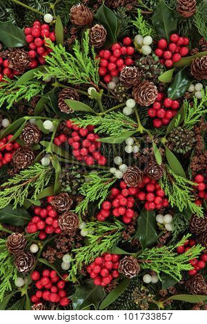 Winter and christmas abstract background with holly, ivy, mistletoe and winter greenery.