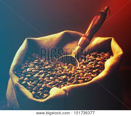 Coffee beans on burlap sack with metal scoop.Filtered image: cool cross processed vintage effect.