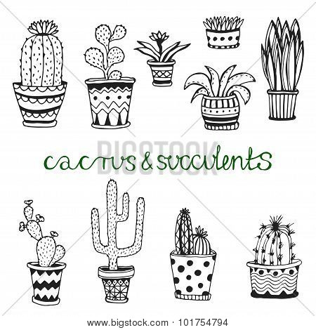 Hand drawn succulent and cactuse set. Doodle florals in pots. Vector botanical set with cute house i