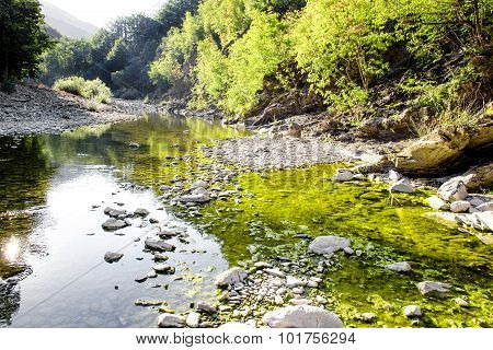 Glimpse Of A River With Green Reflection