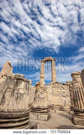 Columns Of Temple Apollo
