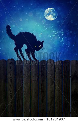 Black cat on old wood fence at  night