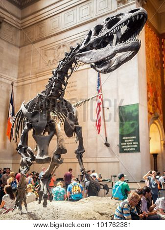 NEW YORK,USA - AUGUST 17,2015 :  Giant Tyrannosauris Rex at the lobby of the  American Museum of Natural History