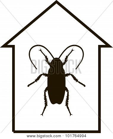 Cockroach In The House. Vector.eps