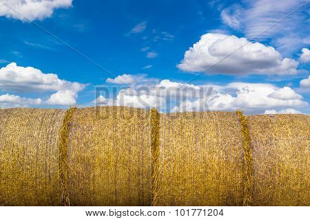 Yellow Round Straw Bales And Blue Sky