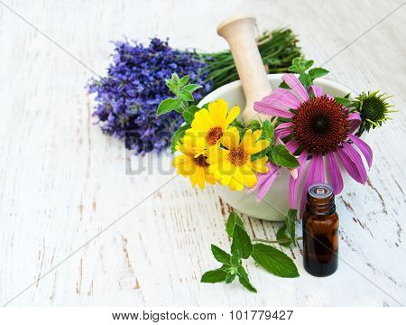 Medical Flowers  In Mortar