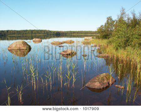 Stony Forest Lake