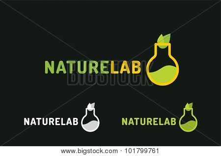 Laboratory ecology vector logo. Lab Eco icon logo isolated. Chemicals, nature logo, natural logo, science logo icon, technology logo, Eco green icon logo. laboratory glassware and leaves