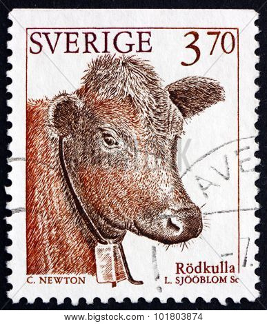 Postage Stamp Sweden 1995 Red Polled Cattle