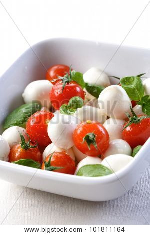 Salad with tomatoes and mozarella