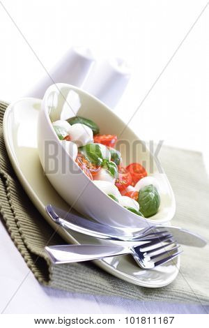 Studio shot of tomato and mozarella salad