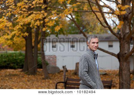 Fall Leaves Stroll