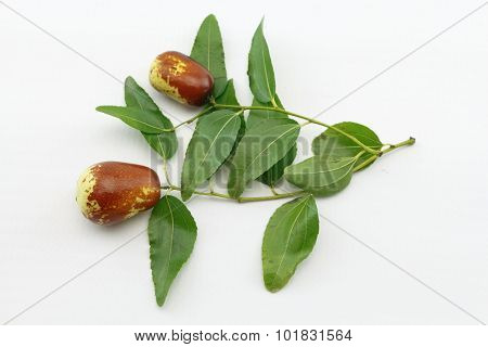 Jujube Fruit Closeup On Branch With Green Leaves,isolated On White Background
