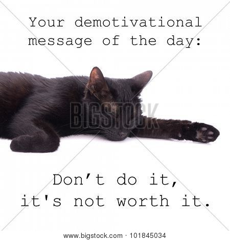 Your demotivational message of the day - don't do it, it's not worth it - quote with a black cat sleeping on white background