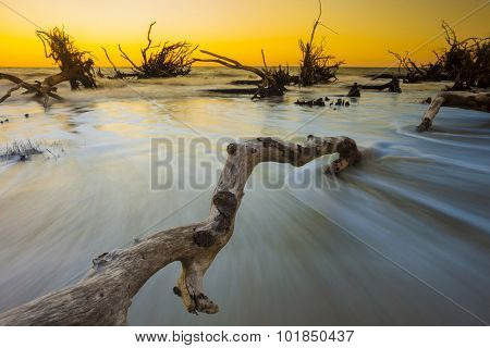 driftwood in the ocean at sunset, long exposure