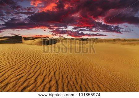 Majestic Fiery Sunset In The Gobi Desert. Mongolia.