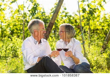Seniors sitting in vineyard drinking red wine, woman and man toasting each other