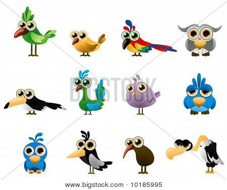 bird vector - cartoon series