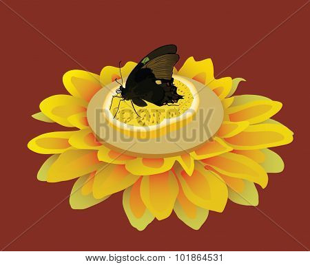 Butterfly on a branch vector illustration