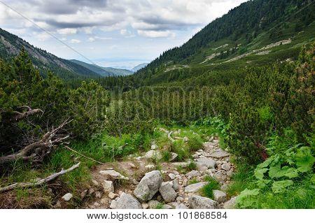 Landscape of Retezat National Park mountains at summer in South Carpatians, Transylvania, Romania, Europe.