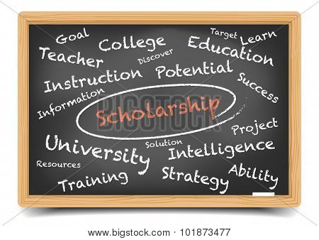 detailed illustration of a Scholarship wordcloud on a blackboard, eps10 vector, gradient mesh included