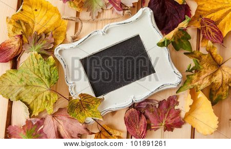 Chalkboard With Fallen Leaves