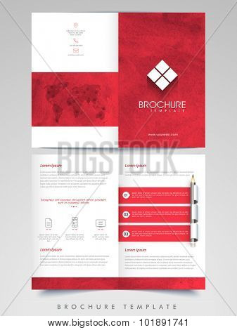 Professional Business infographics Brochure, Template or Flyer design with front and back side presentation.