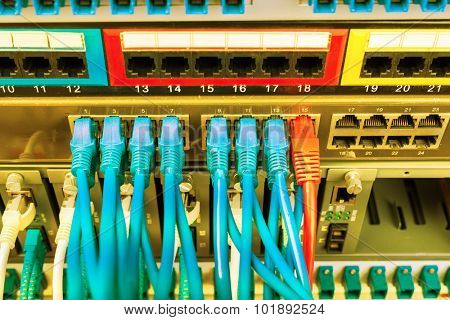 with network cables installed in the rack