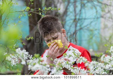 Boy With Allergic Rhinitis In  Spring Garden