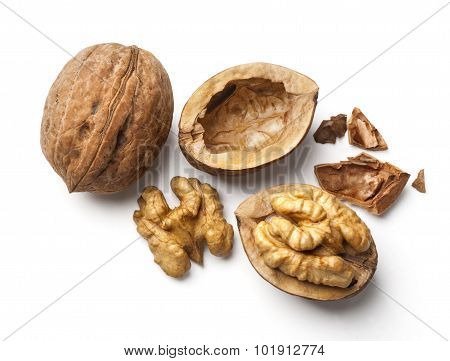 Walnut And A Cracked Walnut