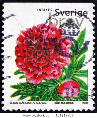 Postage Stamp Sweden 2001 Chinese Peony Mons Jules Elie