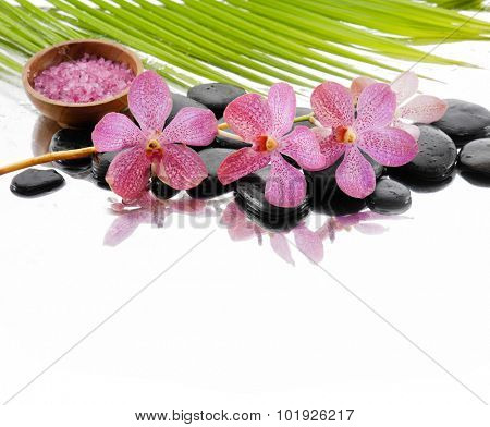 Lying down branch pink orchid with stones ,salt in bowl and palm
