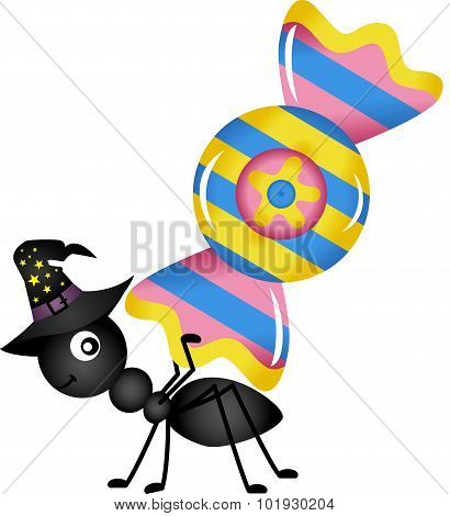 Ant Carrying a Halloween Candy