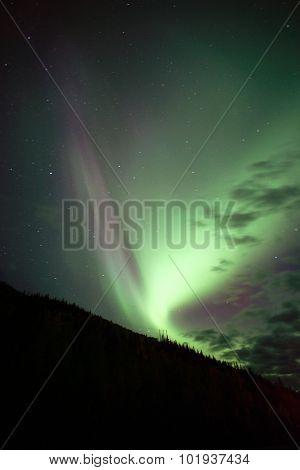 Hillside Trees Northern Lights Aurora Borealis Alaska Night Sky