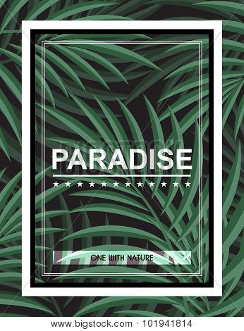 Exotic background with palm leaves and frame for design hipster