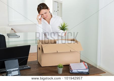 Businesswoman Putting Her Belongings In Box