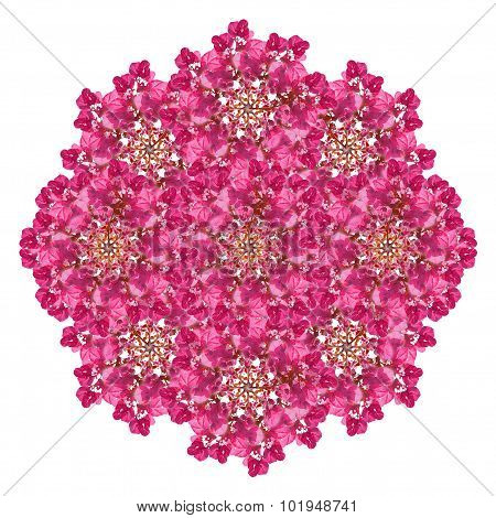 Isolated Pink Floral Decorative Ornament