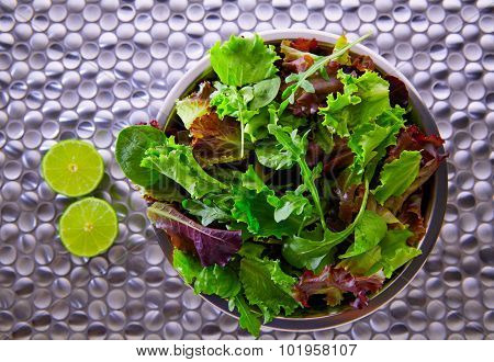 Green salad Mediterranean green and red lettuce spinach on modern stainless steel table