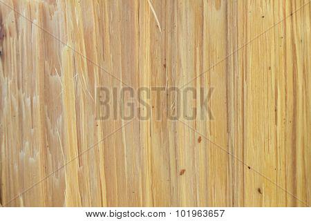 Pine Break Wood Texture