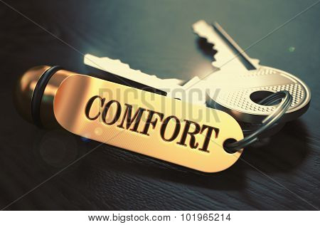 Comfort - Bunch of Keys with Text on Golden Keychain.
