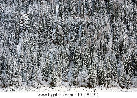 Alpine Scene, Northern Italy