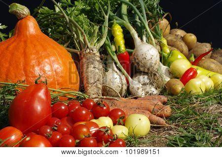 vegetables still life detail