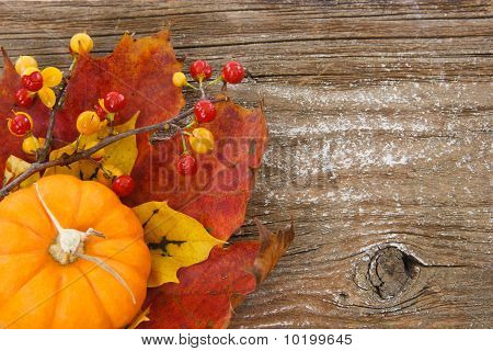 Autumn Charm Background With Copy Space