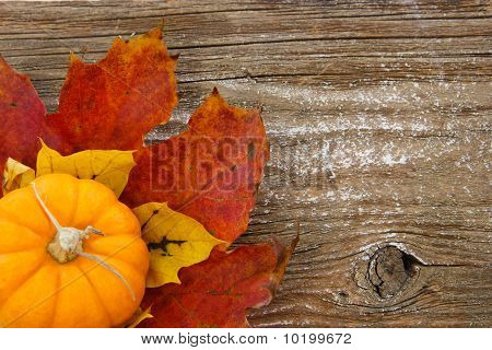 Colorful Autumn Background With Country Charm