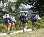 Walkers With Backpacks And Rucksacks poster